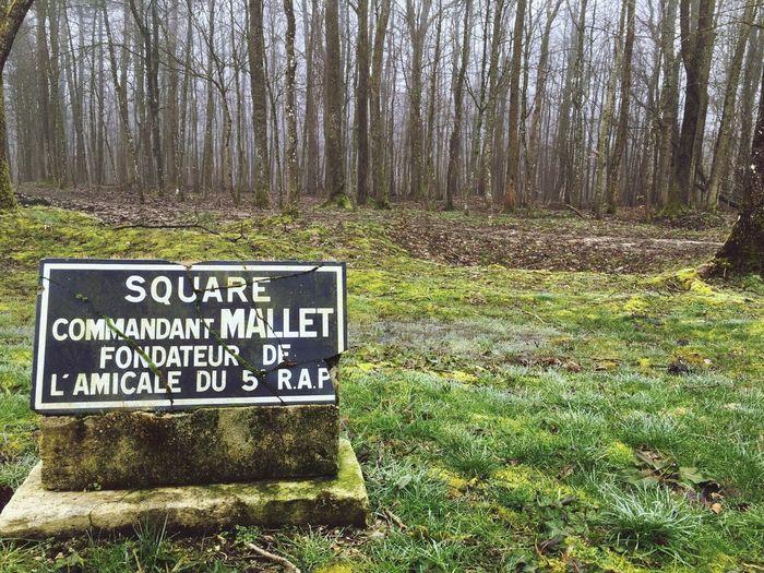 21 Février - 19 Décembre 1916; Mémorial Verdun