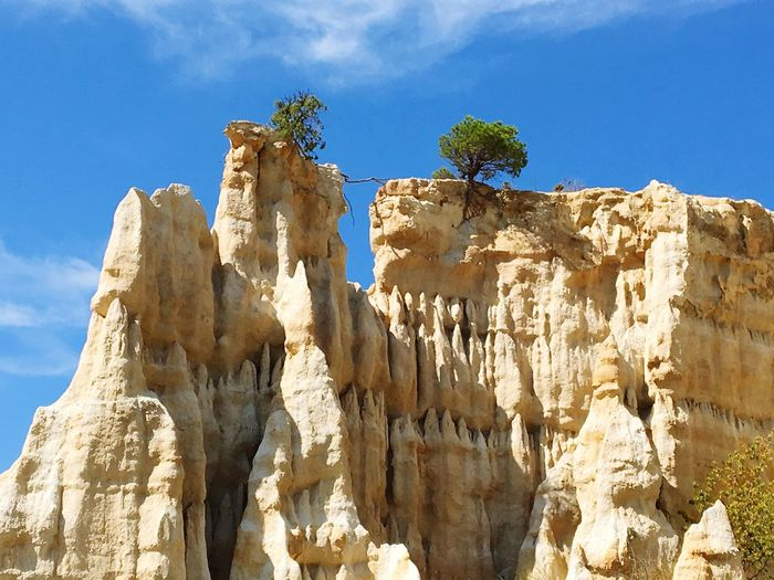 Low angle view of trees on rock formation against sky