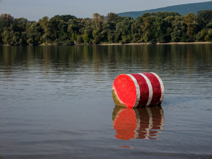Red umbrella on lake against trees during sunny day