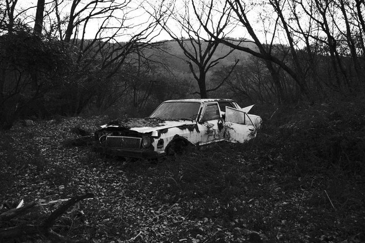 Abandoned car on field