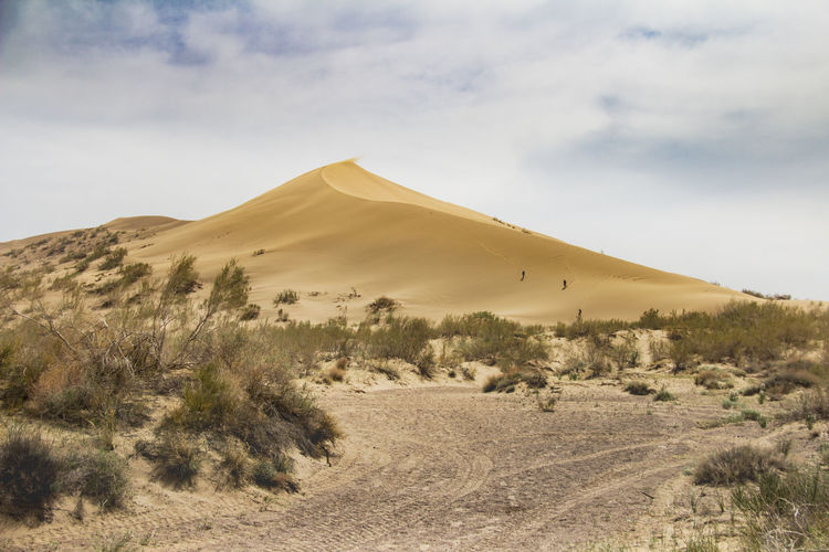 A large sand dune in the desert, bushes grow at the foot, a road leads to the dune, sky and clouds
