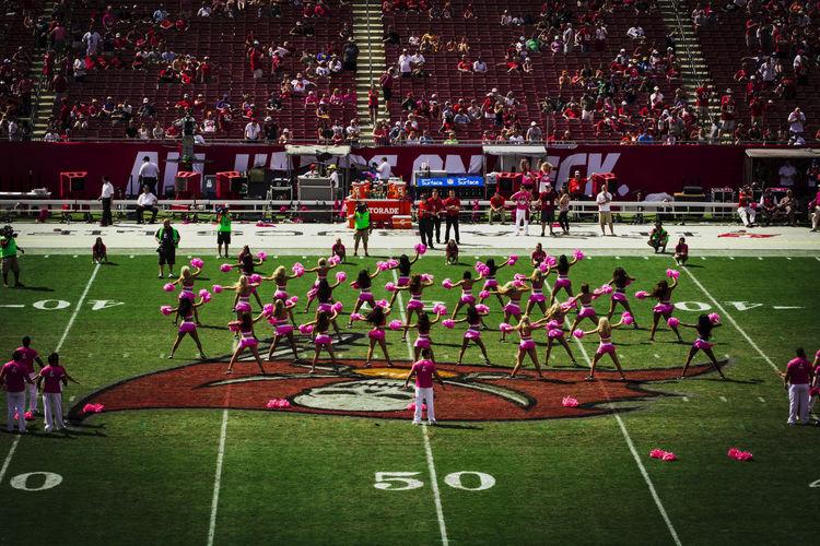 NFL Football game Buccaneers vs Ravens. CancerAwareness BaltimoreRavens Buccaneers CancerSucks Cheerleader Cheerleaders  Cheerleading NFL NFL Football Pink Raven PinkRibbon