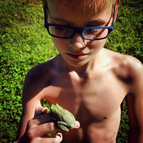 Being A Dad Nature Light And Shadow Darkness And Light Faces Of Summer Frog Frogs Boy Nature_collection Colour Of Life Nature Photography Boys Boys Will Be Boys Grass Green Color Boy In Glasses Boy With Frog Boy With Glasses Color Blue