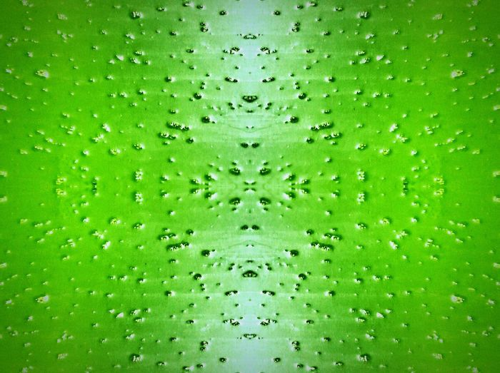 Symmetry And Chaos Green Green Green!  Taking Photos