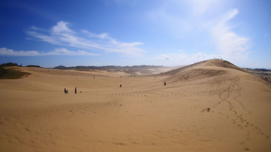 Arid Arid Climate Arid Landscape Barren Clear Sky Composition Copy Space Desert Extreme Terrain FootPrint Geology Horizon Over Land Japan Landscape Natural Pattern Perspective Physical Geography Remote Sand Sand Dune Trip