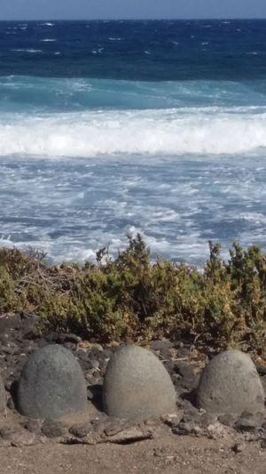 Water Sea Tree Beach Wave Sand Rock - Object Sky Horizon Over Water Landscape