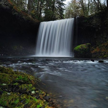 Beaver Falls, Clatskanie, OR Oregonnw Waterfall Beaverfalls Silky Cascadiaexplored Pacificnorthwest Lifeofadventure PNWonderland PNW Thatpnwlife Wildernessculture Pnwcollective Thenwadventure Naturelovers Northwestisbest Upperleftusa Wilderness Oregonexplored Getoutside ExploreEverything Wanderlust Northwest Discoveroregon Pnwlife Nw instagram scenic water theoutbound ourcamplife