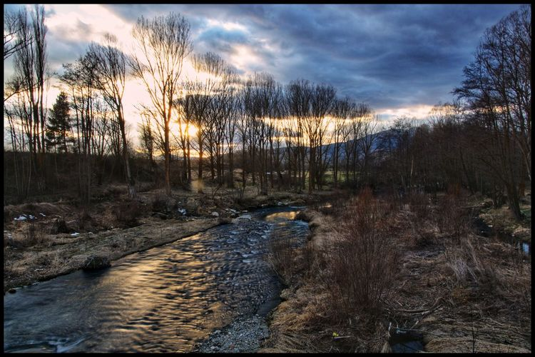 Sunset from the river Tree Water Sunset Bare Tree Forest Sky Snowcapped Mountain Tranquil Scene Countryside Idyllic Stream Scenics Tranquility Calm