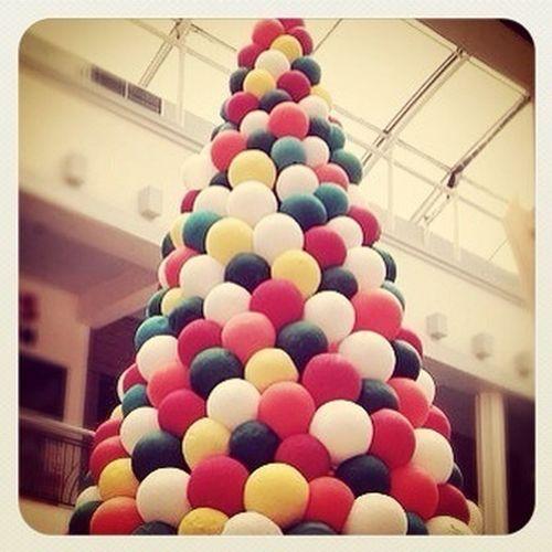 Christmas Tree at Citos (December - 2012)