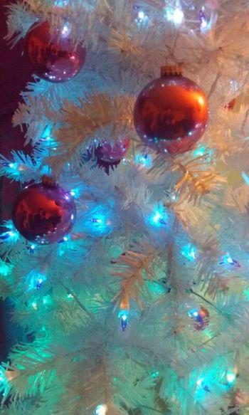 Original Xmas Decorations Xmas Tree Xmas🎄 Xmaslights Multi Colored Celebration Backgrounds No People Holiday POV Holidays White White Christmas Tree Christmas Decoration Illuminated Christmas Ornament Red bulbs Hipstography Hipstamatic