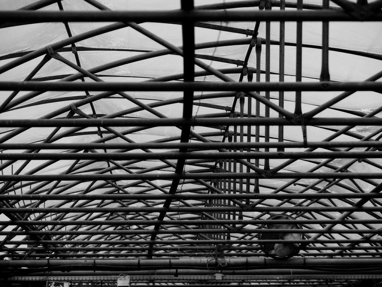 The Architect - 2017 EyeEm Awards Garden Centre indoors in Germany Black And White Friday