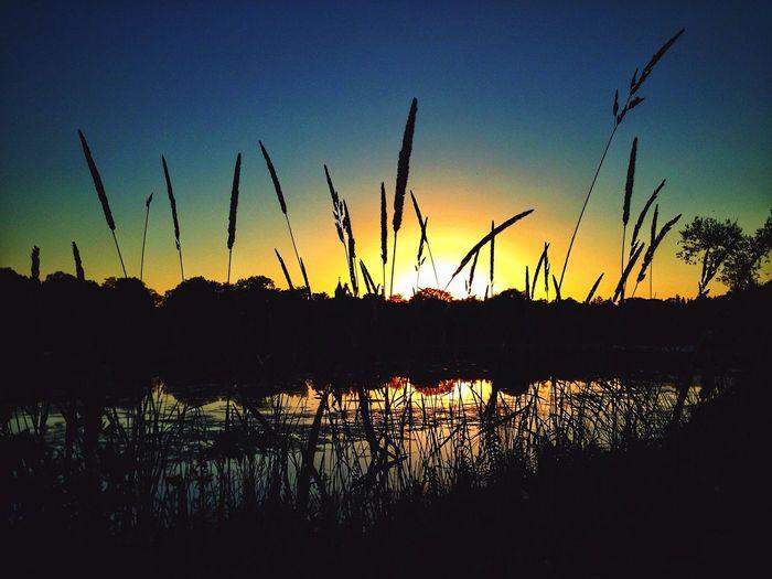 Sunset Lake Of