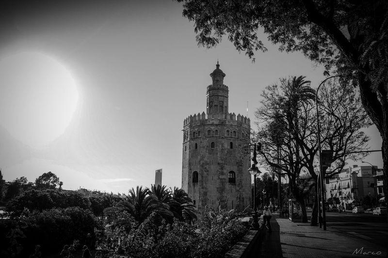 Architecture History Built Structure Sevillagram MyCity❤️ Igerssevilla Black & White Hdrphotography HDR Picsartrefugees Picsart Sevillaarchitecture sevilla andalucíaSeville,spain