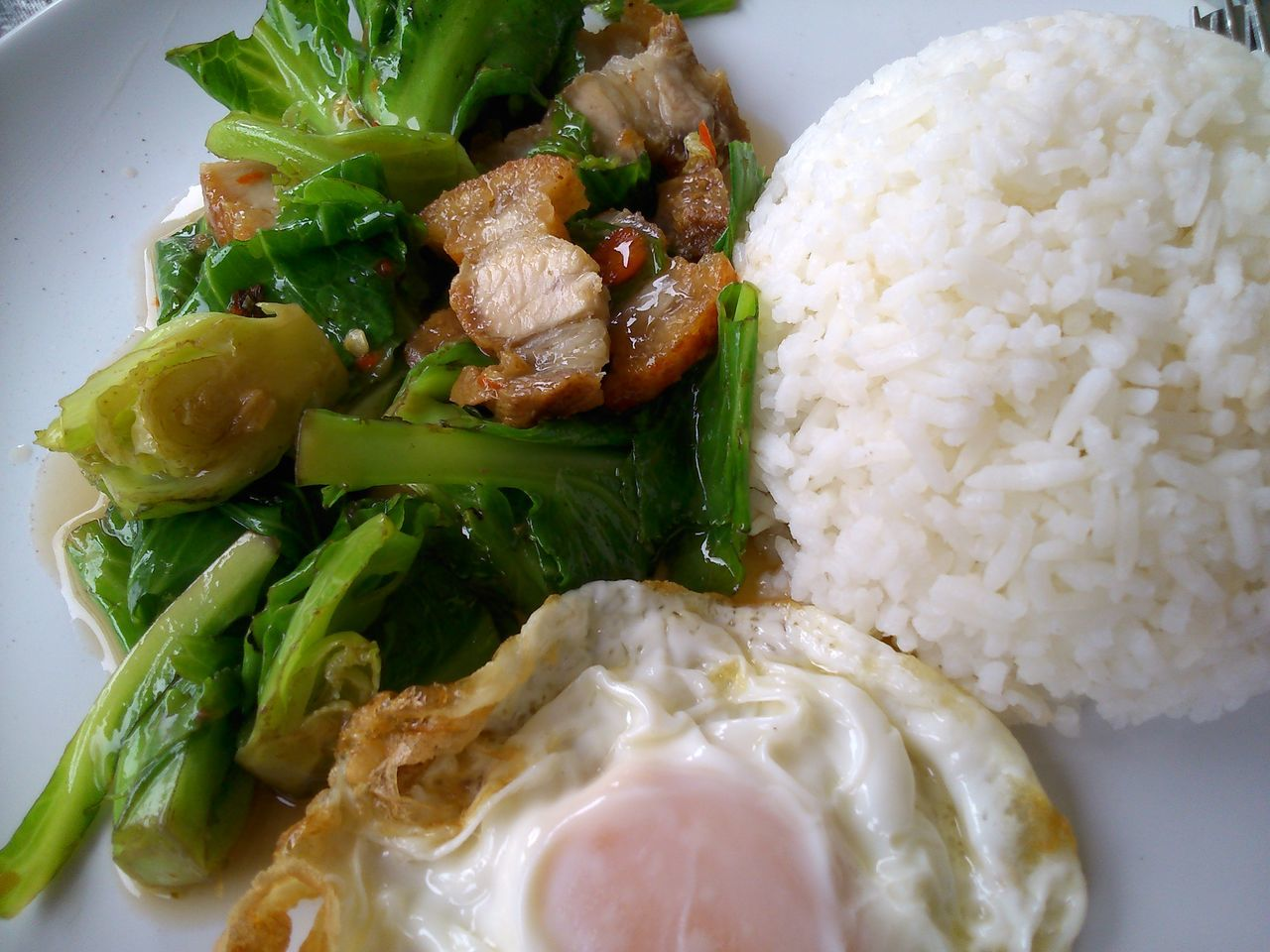 healthy eating, food and drink, food, ready-to-eat, serving size, vegetable, rice - food staple, plate, freshness, indoors, no people, close-up, rice, mashed potatoes, fried rice, day