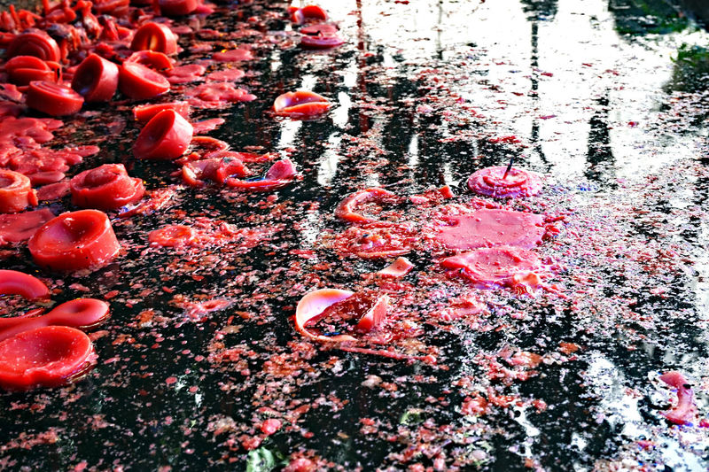 Abundance Beauty In Nature Candle Reflections Candles Candles In The Sun  Candles In The Water Change Close-up Day Elevated View EyeEm Best Shots Eyeem Philippines Eyeem Photography Full Frame Growth Large Group Of Objects Nature No People Outdoors Pink Color Plant Red Red Candles The Week On EyeEm Tranquility