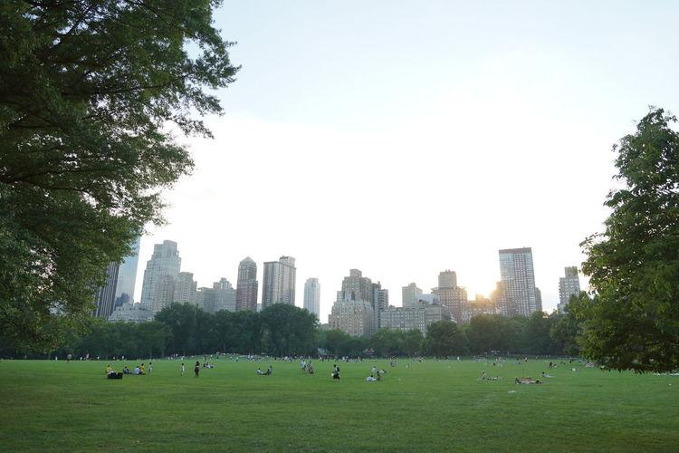 People relaxing in park against sky