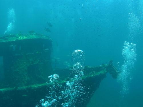Adventure Blue Diving Fish UnderSea Underwater Water Wrack KuBa