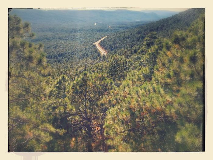 Outdoors Nature Scenics Landscape Day Beauty In Nature Apache Sitegreaves National Forest Mongollon Rim