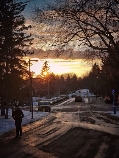 View of street during winter at sunset