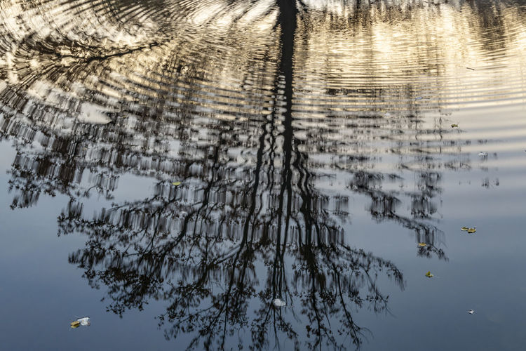 Reflection of Bare Tree in Small Pond Berlin Color Image Germany 🇩🇪 Deutschland Horizontal Outdoors No People Tree Plant Sky Beauty In Nature Nature Tranquility Growth Day Tranquil Scene Scenics - Nature Water Pond Park Tree Bare Tree Reflection Rippled Rippled Water Waterfront Close-up Backgrounds Mirrored