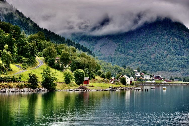 Travelling Serenity Peaceful Rural Planet Earth Natural Beauty Fjord Green Landscape Norway Water Tree Beauty In Nature Mountain Scenics - Nature Plant Sky Cloud - Sky Tranquil Scene Nature Tranquility Outdoors Waterfront Day