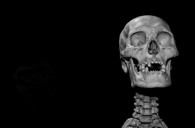 Skull Macabre