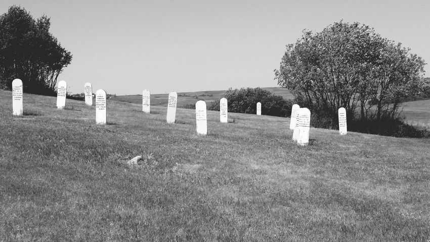 Tree Cemetery Tombstone Death In A Row Grass Graveyard LandscapePeace ✌ Memories Tranquil Scene Clear Sky Tranquility Memorial Blue Repetition Nature Outdoors The Past Stone Material Day North Dakota