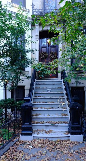 Fall in Park Slope Brooklyn. Steps Steps And Staircases Architecture Building Exterior Outdoors Staircase Day Tree Plant Nature Lamps And Lights. Autumn🍁🍁🍁 Brooklyn, NY 11217! Photography
