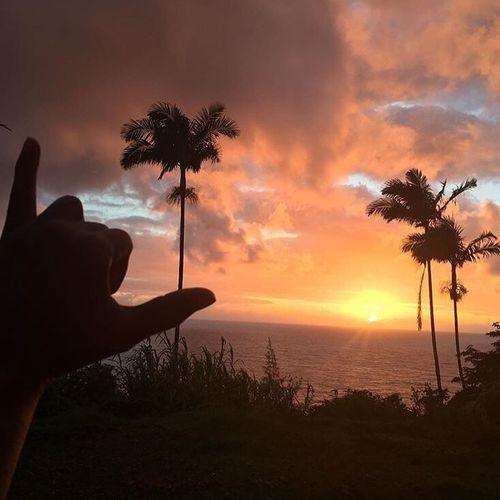 Holiday POV Permanentshaka Aloha! Follow me on Instagram: @AoleWaiwai