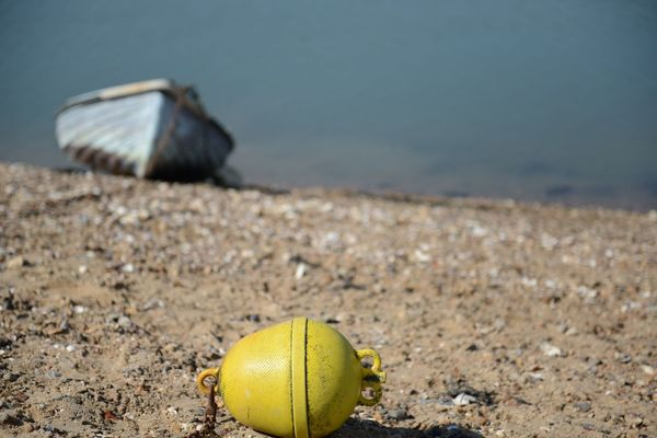 Buoys and boats Mersea Isalnd Sea Water Boar Buoy Land Focus On Foreground Nature Beach Day Sand No People Animal Close-up Surface Level Selective Focus Outdoors Ball Water Sea Animal Wildlife Animal Themes Animals In The Wild Sport One Animal