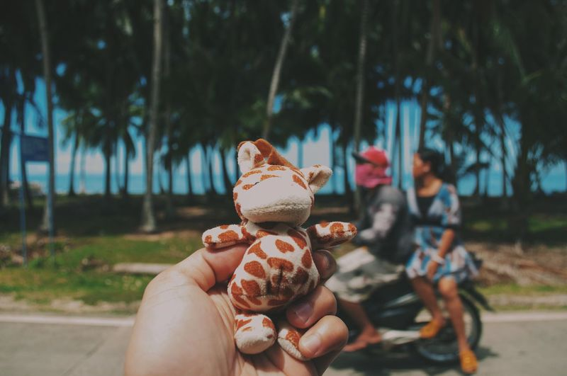 Cropped hand holding stuffed toy against trees