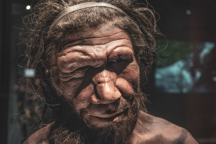 Adult Beard Body Part Close-up Facial Hair Focus On Foreground Front View Hair Hairstyle Headshot History Human Body Part Human Face Indoors  Leisure Activity Lifestyles Looking At Camera Mature Adult Mature Men Men Neanderthal One Person Portrait Prehistoric Real People