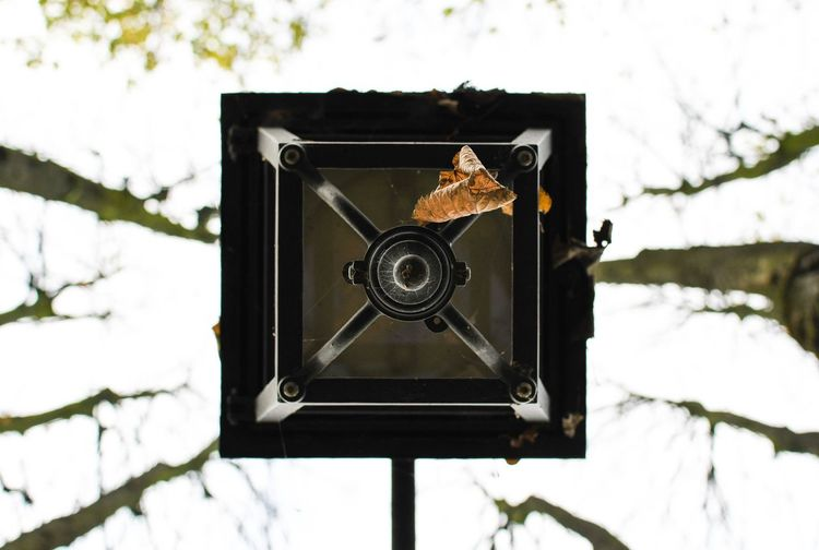 Close-up of camera on tree stump during winter
