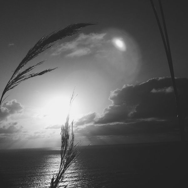 Muriwai Sunset Blackandwhite Photography Monochrome Holga Photography EyeEmNewHere Connected By Travel