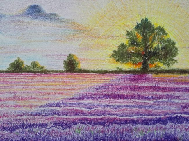 Provence's lavender...paint with marco... Beauty Painting Enjoying Life Drawings Lavender Relaxing Paintings Inspirations Painting Art Beautiful Scenery