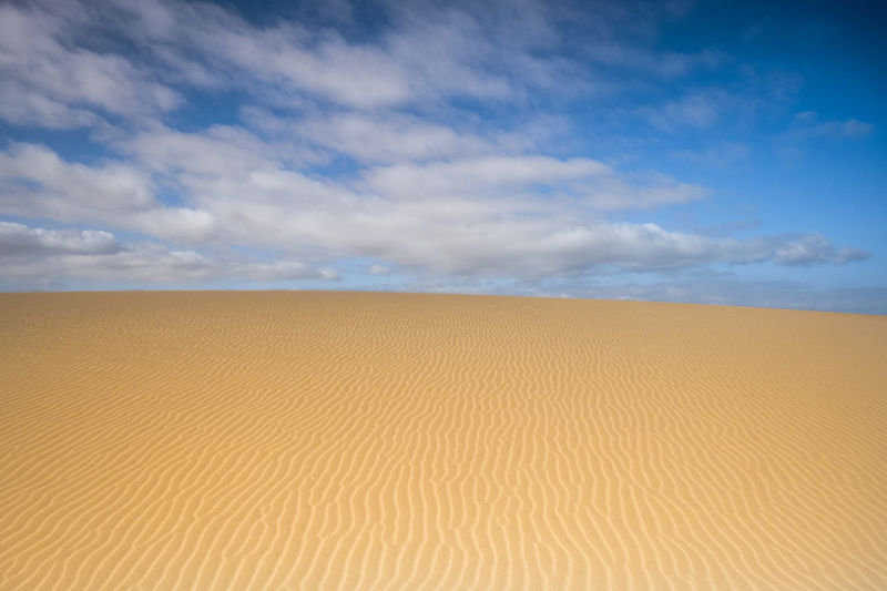 beautiful view of dune in the desert Adventure Arid Climate Beauty In Nature Blue Cloud - Sky Day Desert Dry Climate Landscape Nature No People Outdoors Pattern Sand Sand Dune Scenics Sea Silence Sky Solitude Striped Tranquil Scene Tranquility Water