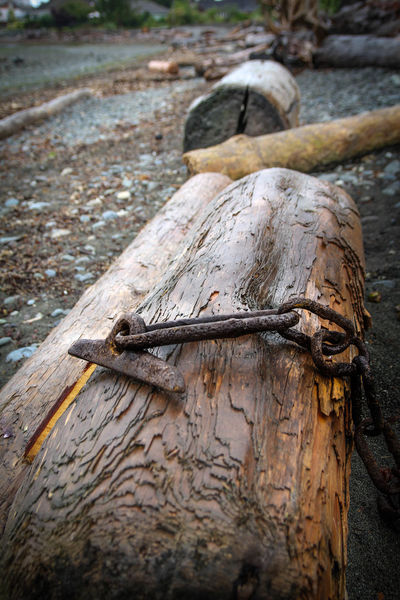 Anchor Water Vancouver Log Pebbles Rock - Object Washed Up Brown Blue Sky Nature Grey Rock Lakeview