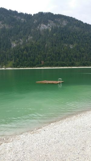 Lake Photo 5 No Edit/no Filter What Means Summer? Summer ☀ Lake View Faces Of Summer Swimming Time Summer2015 Green Water Going Swimming Go To The Sea