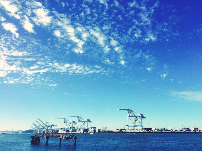 Harbor Cranespotting Kräne