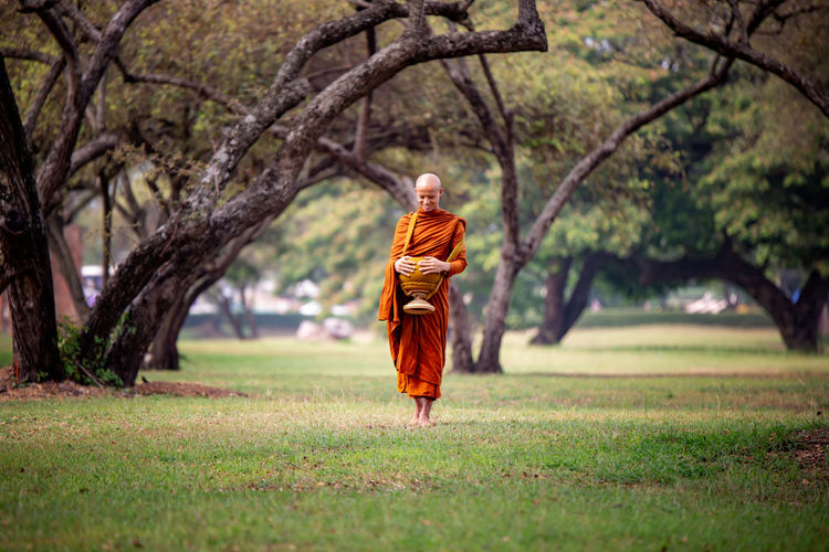 Buddha Buddihst Thailand Adult Clothing Day Focus On Foreground Full Length Grass Growth Lifestyles Men Monk  Nature One Person Outdoors Plant Real People Rear View Religion Temple Thailand_allshots Traditional Clothing Tree Walking
