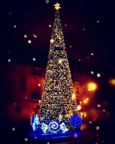 Christmas Tree Christmas Christmas Decoration Christmas Lights Tree Holiday - Event Christmas Ornament Tradition No People Night Celebration Illuminated MeeryXmas Joyeux Noël Choinka🌲 Katowice Święta 🎄 Boże Narodzenie Zima świąteczny