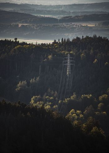 Electricity  Environment Forest High Angle View High Voltage Line Landscape Plant Power Cable Power Line  Scenics - Nature Tree