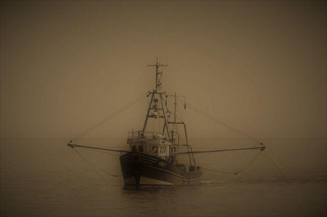 Fishtrawler