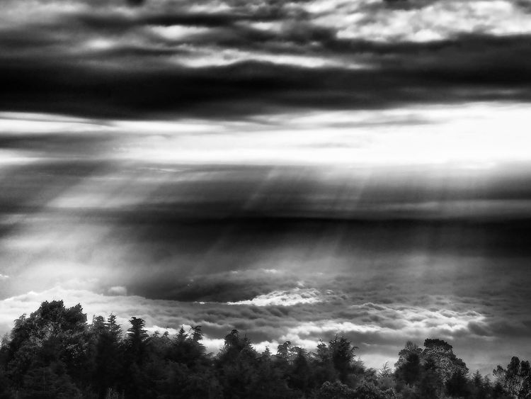 Scenery at Mt Prau Dramatic Sky Atmospheric Mood Cloud - Sky Sky Outdoors Nature Landscape Bw_collection BW_photography Bw_lover Java Indonesia Praumountain