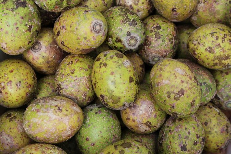 hog plum tree Water Healthy Lifestyle Fruit Mediterranean Food Eating Backgrounds Market Dieting Full Frame Social Issues Pastry Sour Taste Dessert Topping Low Carb Diet Citrus Fruit Puff Pastry Whipped Cream Lemon Grapefruit Orange Tree Santa Fe Province Chocolate Cake Tangerine Mousse Gluten Free Lemon Tree Vitamin C Juicer Farmer Market Supermarket