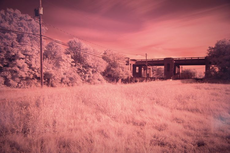 Ir Photography IR Shot Triple Decker Overpass Chesapeake Va IR W/digital Camera Triple Decker IR Photo Canon 5d Mark Lll Chesapeake
