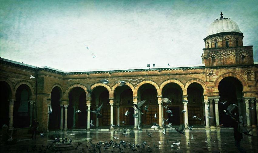 EyeemMedina Mosquée Zitouna Amazing View