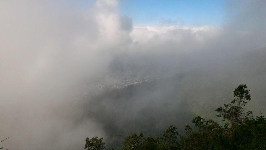 El Avila Caracas El Avila .Caracas Venezuela Beauty In Nature Day Fog Hazy  Landscape Mist Nature No People Outdoors Scenics Sky Tranquil Scene Tranquility Tree