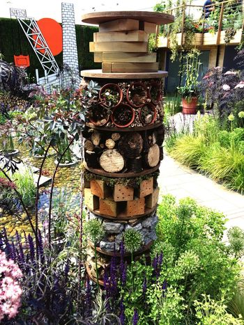 Growth Plant Potted Plant Day No People Outdoors Nature Built Structure Architecture Flower Building Exterior Barrel Beauty In Nature Freshness Wine Cask