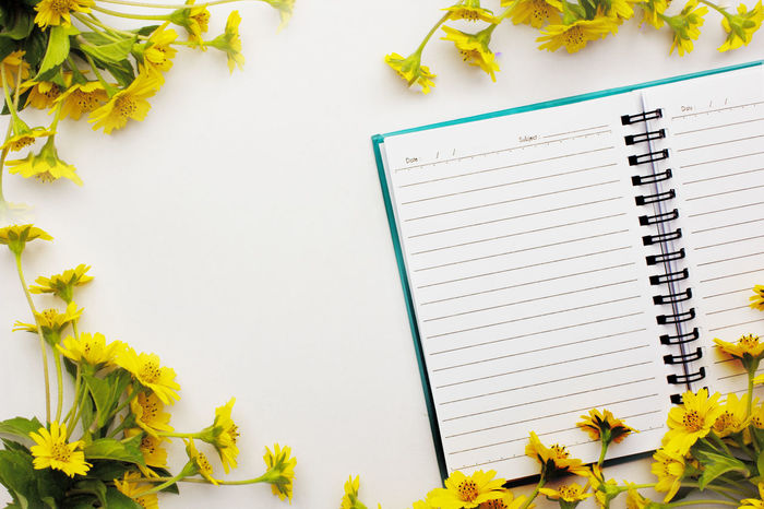 Note framed by yellow flowers with space for text. Day Flower Growth Horizontal Indoors  Leaf Nature No People Note Papers Notebook Notes From The Underground Office Plant Yellow